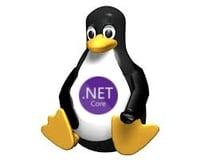 Linux & .NET Core