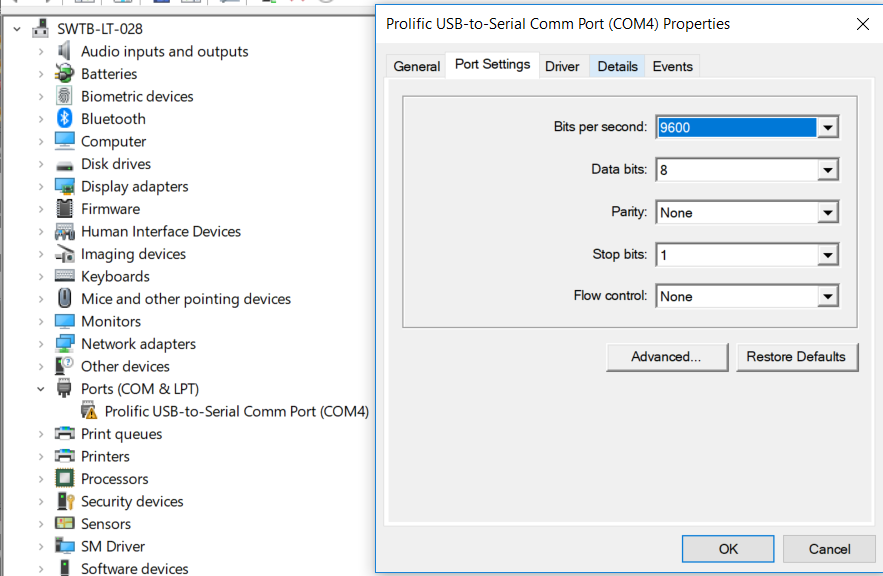 Screenshot - Virtual COM in Device Manager