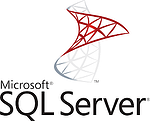 OmniServer Professional Logs Process Data to MS SQL Server